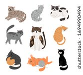 Fanny Cartoon Cats In Different ...