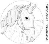 A Beautiful Horse.coloring Book ...