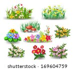 Bunches Of Flowers Collection