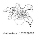 violet flowers drawn by a line. ... | Shutterstock .eps vector #1696230037