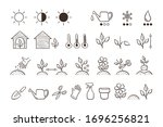 Plant Icon Set. Collection Of...