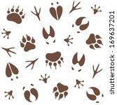 Paw Print. Pattern