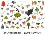 Apine Tundra Biome  Natural...