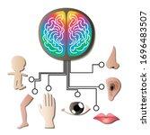 sensory input and integration...   Shutterstock .eps vector #1696483507
