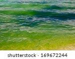 A Green Algae Bloom In The Ocean