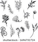 botanical vector illustration....   Shutterstock .eps vector #1696731724