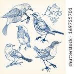 vector set of hand drawn birds | Shutterstock .eps vector #169725701