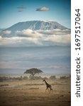 A Giraffe In Front Of Mount...