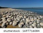 The Stromatolites of Hamelin Pool -  Australia