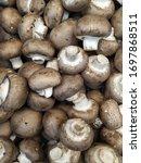 Mushrooms Champignons In Black...