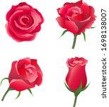 red rose flower vector... | Shutterstock .eps vector #1698138007