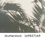 palm leaf shadows on a white... | Shutterstock . vector #169837169