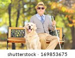 senior blind gentleman sitting... | Shutterstock . vector #169853675