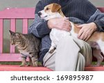 Stock photo man cuddling dog and cat sitting next to them on bench 169895987