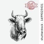 breeding cow. animal husbandry. ...   Shutterstock .eps vector #1699025431