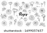 set of black and white outline... | Shutterstock .eps vector #1699057657
