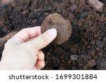 Unused Coffee Grounds Are...