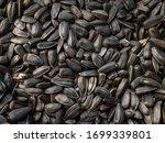 Background Of Sunflower Seeds...