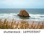 a peaceful oregon beach...   Shutterstock . vector #1699355047