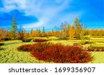 Autumn Wilderness Steppe Natur...