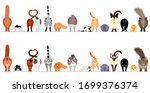 Various Cute Cats Border In A...