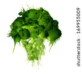 broccoli made of colorful... | Shutterstock .eps vector #169955009
