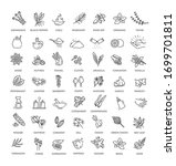 Condiment Icons Set. Outline...