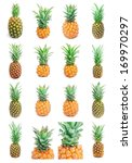 collection of ripe tasty... | Shutterstock . vector #169970297