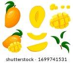 set of fresh whole  half  cut... | Shutterstock .eps vector #1699741531