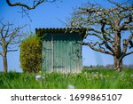 Tool Shed On An Orchard In...
