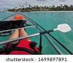 Go On A Glass Kayak Adventure...