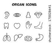 organ icons, mono vector symbols
