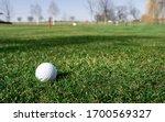 White Golf Ball Laying On Gree...