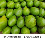 avocado fruits  persea... | Shutterstock . vector #1700722051