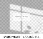 shadow overlay effect. natural... | Shutterstock .eps vector #1700830411