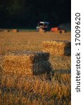 Field Of Straw Bales With...