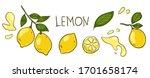 lemon vector elements and...   Shutterstock .eps vector #1701658174