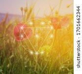 sacred geometry inspired vector ... | Shutterstock .eps vector #1701662344