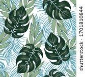 summer seamless tropical... | Shutterstock .eps vector #1701810844