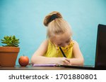 Hardworking Elementary Student...