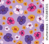 colorful pansies vector... | Shutterstock .eps vector #1701885331
