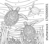 Family Of Turtles With Small...