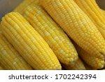 Fresh Hot Steamed Sweet Corn In ...
