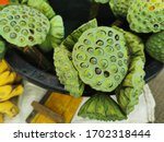 Lotus Seed Fresh Green Lotus...