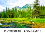 Mountain forest water landscape ...