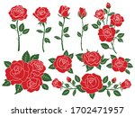 set of red roses. collection of ... | Shutterstock .eps vector #1702471957