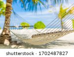 Beach Hammock Hanging On A Palm ...