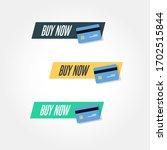 buy now credit card icon vector ... | Shutterstock .eps vector #1702515844