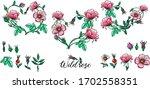 a set of vector flower... | Shutterstock .eps vector #1702558351