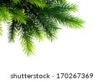 christmas decoration isolated... | Shutterstock . vector #170267369